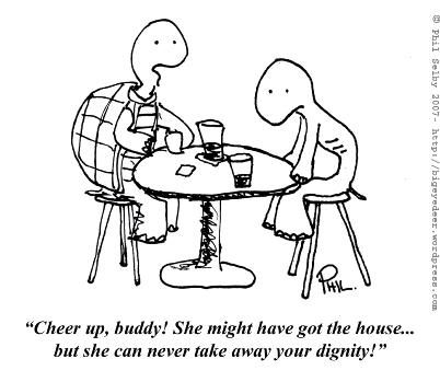 turtle divorce cartoon