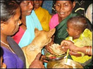 boy marries dog in india