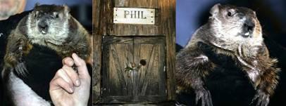 Punxsutawney Phil 2007