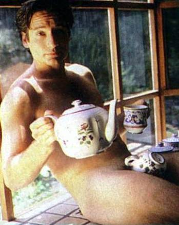 david duchovny nude on window with tea pot