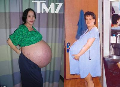 nadya suleman kate gosselin pregnancy pictures