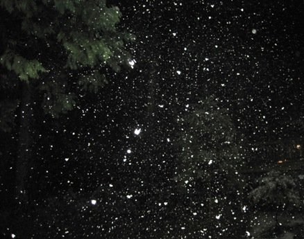 Twain Harte Snow Night Sky
