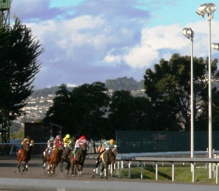 golden gate fields horse racing