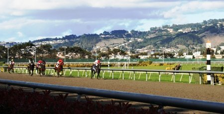golden gate fields race track