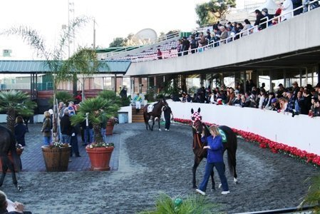 golden gate fields handicapping